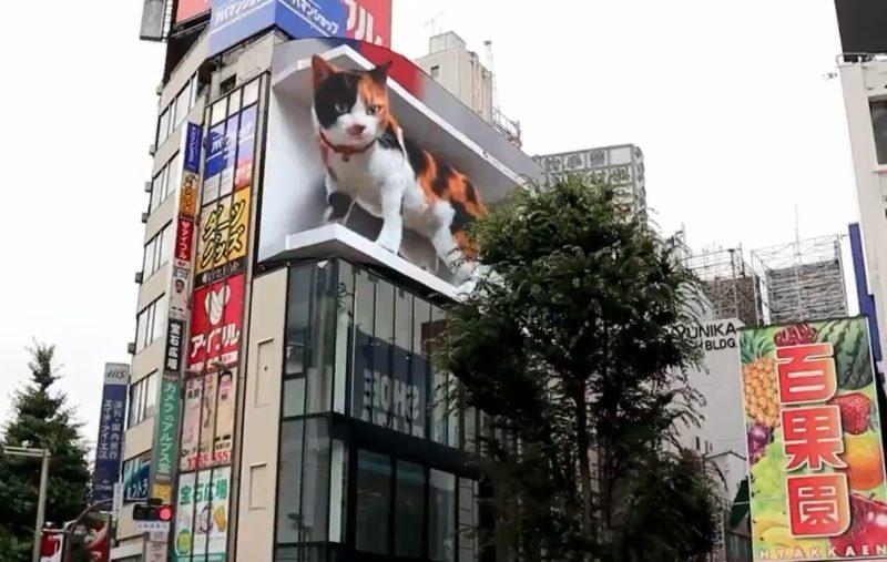 Анимированный 3D кот стал новой достопримечательностью Токио